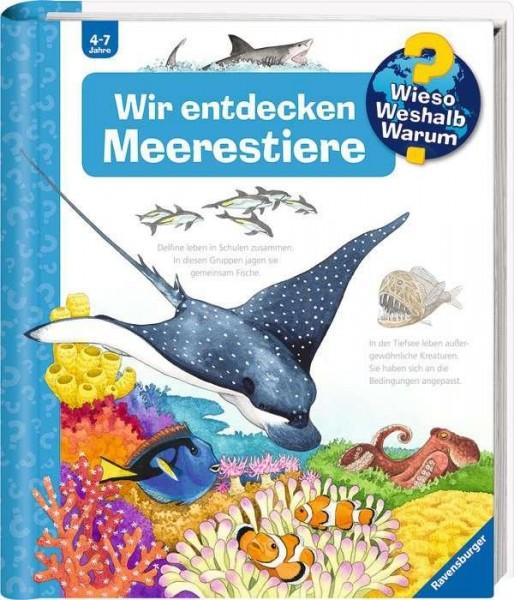32643_1_Wir_entdecken_Meerestiere.jpg