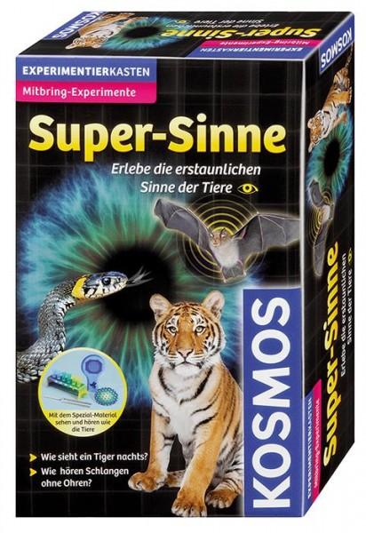 Super_Sinne1.jpg