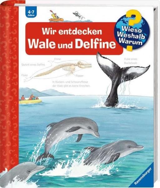 32775_1_Wir_entdecken_Wale_und_Delfine.jpg
